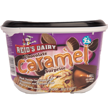 Chocolate Caramel Surprise Premium Ice Cream – Reid's Dairy ...